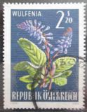 Poštovní známka Rakousko 1966 Alpské květiny Mi# 1211