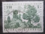 Poštovní známka Rakousko 1967 Studium lesa Mi# 1251