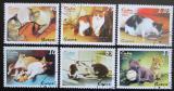 Poštovní známky Kuba 2009 Kočky Mi# 5253-58