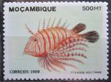 Poštovní známka Mosambik 1989 Ryba Mi# 1161