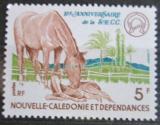 Poštovní známka Nová Kaledonie 1977 Koně Mi# 602