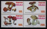 Poštovní známky Karélie, Rusko - Houby Mi# N/N