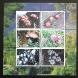 Poštovní známky Tatarstán, Rusko 2003 Houby Mi# N/N