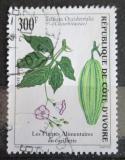 Poštovní známka Pobřeží Slonoviny 2000 Telfairia occidentalis Mi# 1237