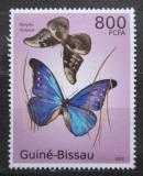 Poštovní známka Guinea-Bissau 2010 Motýli Mi# 5101