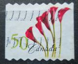 Poštovní známka Kanada 2004 Květiny Mi# 2232 BC