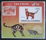 Poštovní známka Komory 2009 Kočky neperf. Mi# 2206 B Block