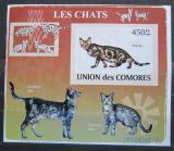 Poštovní známka Komory 2009 Kočky neperf. Mi# 2208 B Block
