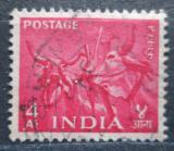 Poštovní známka Indie 1955 Hlavy zebu Mi# 244