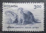 Poštovní známka Indie 2000 Vydry Mi# 1771