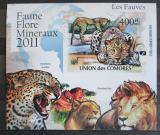 Poštovní známka Komory 2011 Kočkovité šelmy neperf. Mi# 3044 B Block