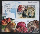 Poštovní známka Komory 2011 Kočkovité šelmy neperf. Mi# 3047 B Block