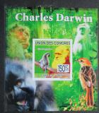 Poštovní známka Komory 2009 Charles Darwin neperf. Mi# 2225 B Block