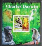 Poštovní známka Komory 2009 Charles Darwin neperf. Mi# 2229 B Block