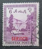 Poštovní známka Pákistán 1957 Údolí Kaghan přetisk, úřední Mi# 55