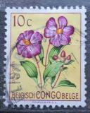 Poštovní známka Belgické Kongo 1952 Květiny, Dissotis magnifica Mi# 295