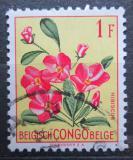 Poštovní známka Belgické Kongo 1952 Květiny, Hibiscus rhodanthus Mi# 303