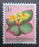 Poštovní známka Belgické Kongo 1952 Květiny, Costus spectabilis Mi# 307
