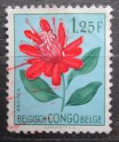 Poštovní známka Belgické Kongo 1952 Květiny, Protea lemairei Mi# 304