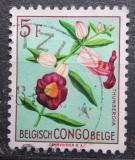 Poštovní známka Belgické Kongo 1952 Květiny, Thunbergia lancifolia Mi# 309