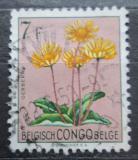 Poštovní známka Belgické Kongo 1952 Květiny, Gerbera discolor Mi# 311