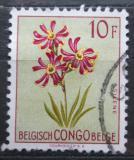 Poštovní známka Belgické Kongo 1952 Květiny, Silene burchellii Mi# 313
