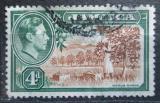 Poštovní známka Jamajka 1938 Citrusový sad Mi# 128