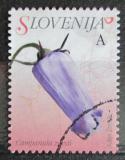 Poštovní známka Slovinsko 2009 Campanula zoysii Mi# 721 A