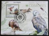 Poštovní známka Komory 2009 Luňák hnědý Mi# 2423 Kat 15€