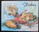 Poštovní známka Somálsko 1998 Ryby Mi# N/N