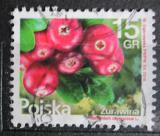 Poštovní známka Polsko 2016 Brusinky Mi# 4871