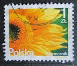 Poštovní známka Polsko 2015 Slunečnice Mi# 4775