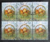 Poštovní známky Polsko 2010 Velikonoční vajíčka blok Mi# 4475 Kat 10.20€