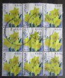 Poštovní známky Lotyšsko 2016 Narcisy blok Mi# 882 II