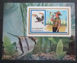 Poštovní známka Fudžajra 1972 Skauti a ptáci neperf. Mi# Block 107 B Kat 11€