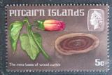 Poštovní známka Pitcairnovy ostrovy 1968 Dřevořezba Mi# 91