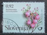 Poštovní známka Slovinsko 2011 Kyhanka sivolistá Mi# 889