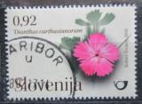 Poštovní známka Slovinsko 2010 Hvozdík kartouzek Mi# 845