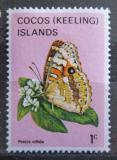 Poštovní známka Kokosové ostrovy 1982 Precis villida Mi# 88