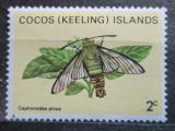 Poštovní známka Kokosové ostrovy 1983 Cephonodes picus Mi# 89