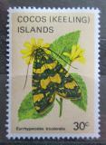 Poštovní známka Kokosové ostrovy 1983 Eurrhyparodes tricolaris Mi# 94