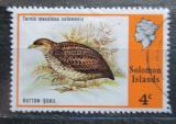 Poštovní známka Šalamounovy ostrovy 1975 Turnix maculosa salomonis Mi# 270