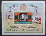 Poštovní známka Lesotho 1981 Princ Filip Mi# Block 11