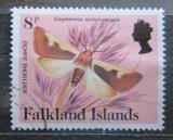 Poštovní známka Falklandské ostrovy 1984 Caphornia ochricraspia Mi# 397