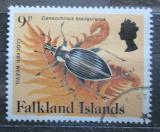 Poštovní známka Falklandské ostrovy 1984 Caneorhinus biangulatus Mi# 398