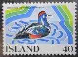 Poštovní známka Island 1977 Kačka strakatá Mi# 524