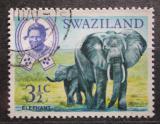Poštovní známka Svazijsko 1968 Sloni Mi# 164