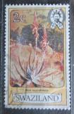 Poštovní známka Svazijsko 1980 Aloe suprafoliata Mi# 340