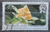 Poštovní známka Svazijsko 1980 Acridocarpus natalitius Mi# 349