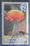 Poštovní známka Svazijsko 1984 Haemanthus magnificus přetisk Mi# 472
